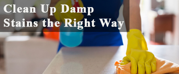 Clean Up Dump stains